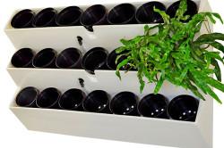 Готовый фитомодуль вертикального озеленения