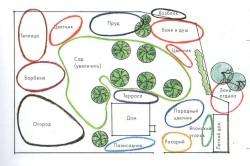 Пример зонирования участка ландшафтного дизайна