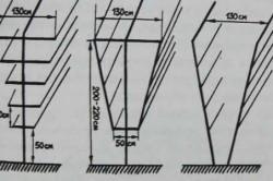 Схема наклонной шпалеры