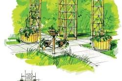 Схема вертикального озеленения двух арок
