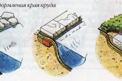 Примеры оформления края пруда