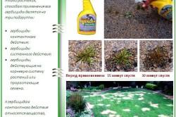 Использование гербицида против сорняков