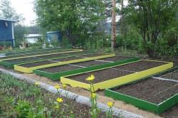 Грядки в огороде на ровной поверхности