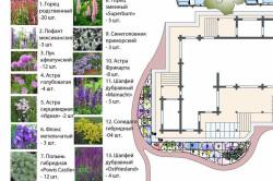 Пример ландшафтного дизайна участка