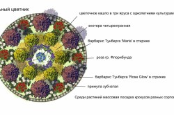 Схема круглого цветника