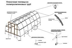Устройство пленочной теплицы из полипропиленовых труб
